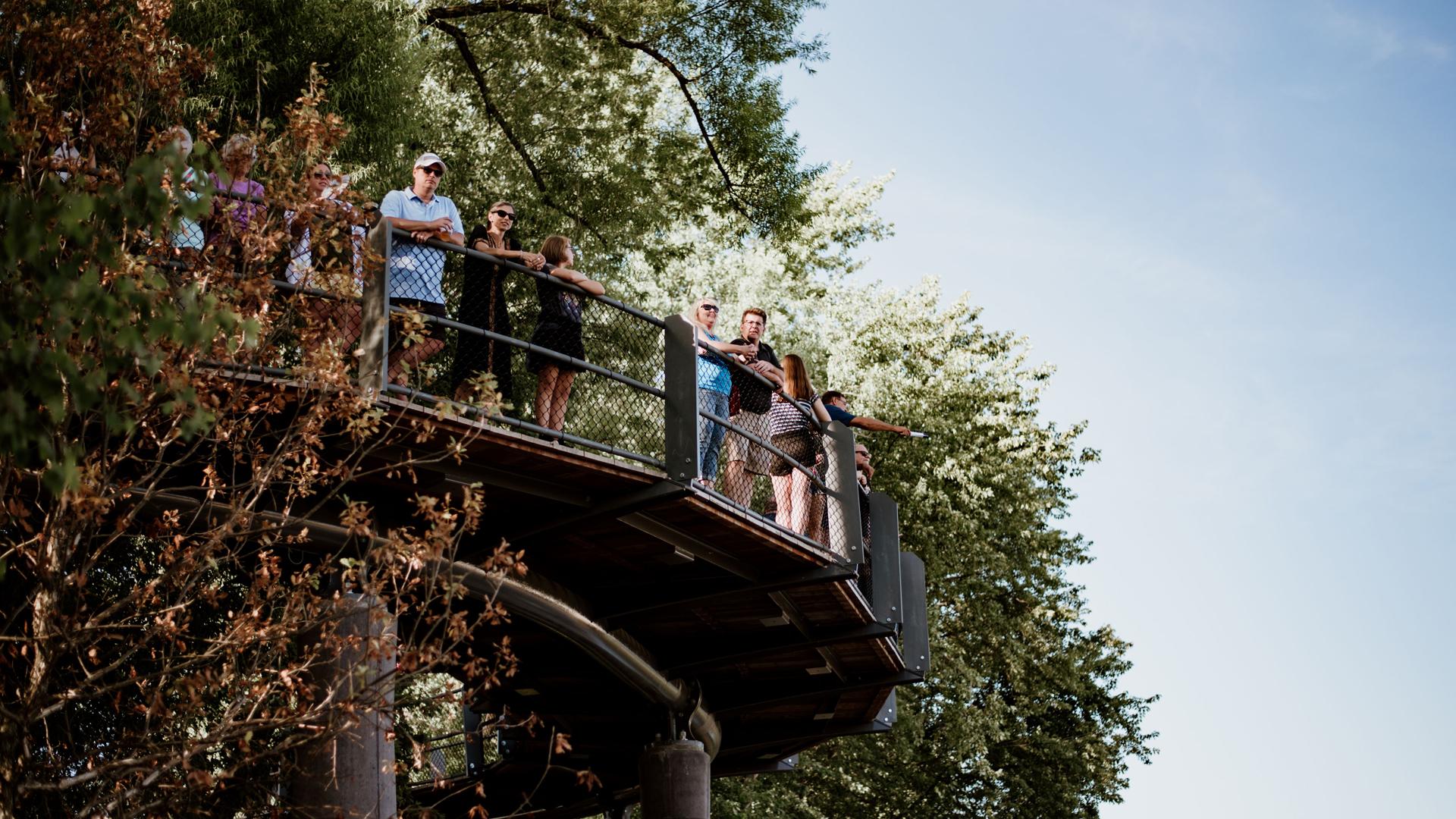 Promenade Park Tree Canopy Trail